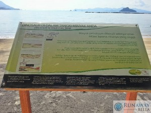 Black Sand Beach Info