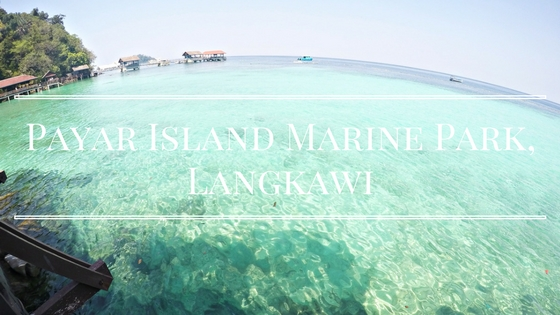Payar Island Marine Park, Langkawi : Sun, Swim, Snorkel
