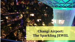 Attraction at Changi Airport, Singapore