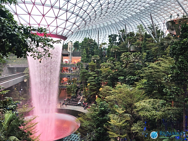Changi Airport Singapore Terminal 1